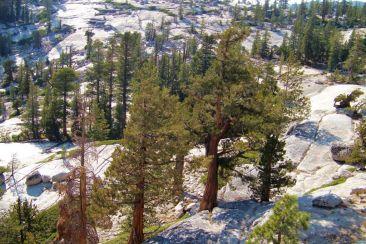 Yosemite NP (71)