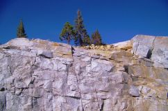 Yosemite NP (80)