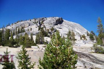 Yosemite NP (83)