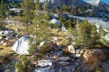 Yosemite NP (87)
