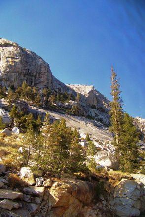 Yosemite NP (88)