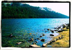 Yosemite NP (95)