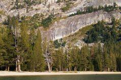 Yosemite NP (96)