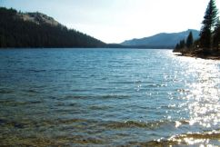 Yosemite NP (99)