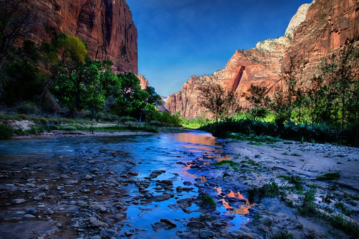 Zion NP 65