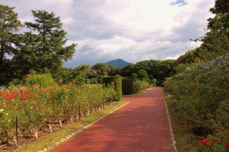 botanical-garden-15