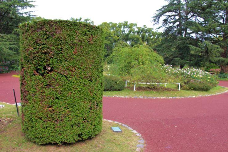 botanical-garden-18