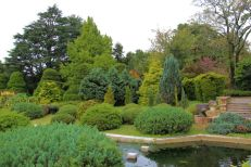 botanical-garden-23