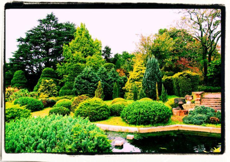 botanical-garden-24