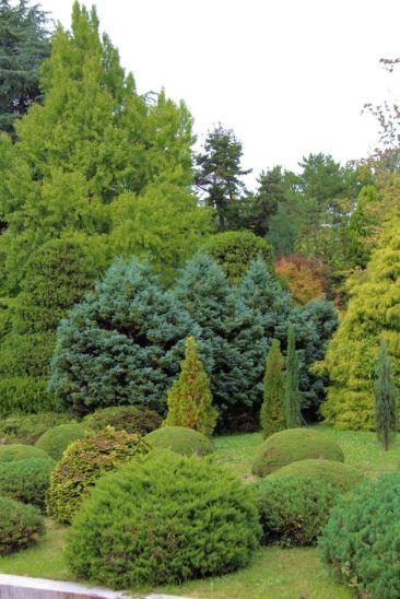 botanical-garden-25
