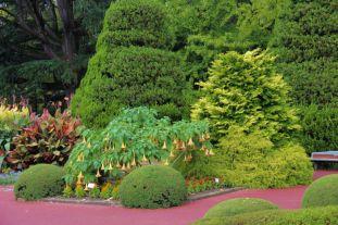 botanical-garden-26