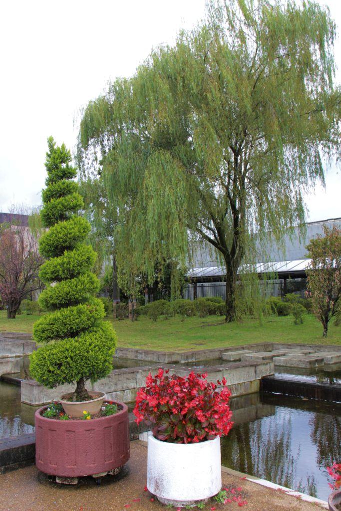 botanical-garden-47