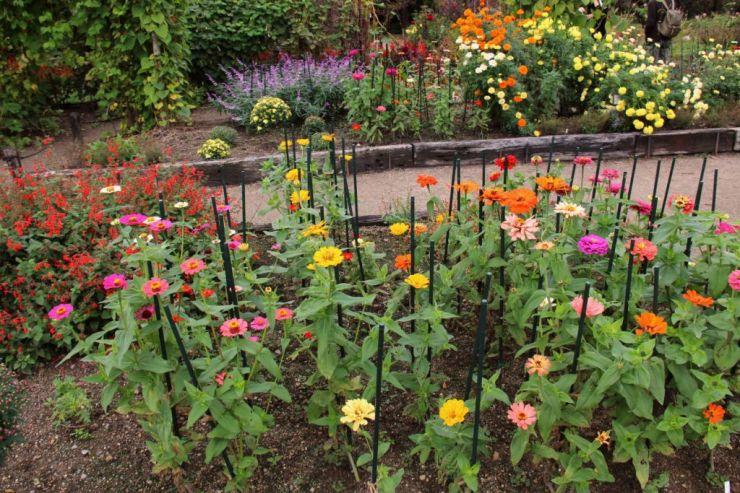 botanical-garden-49