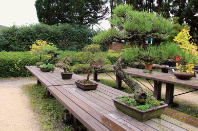 botanical-garden-77