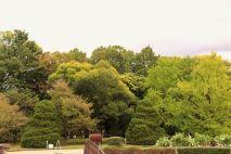botanical-garden-79