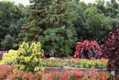 botanical-garden-82