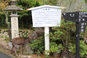 daisho-in-temple-3