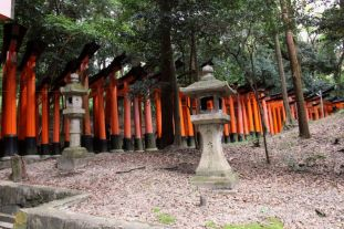 fushimi-inari-taisha-shrine-26