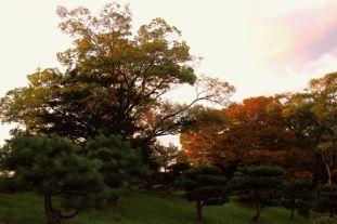 hiroshima-castle-5