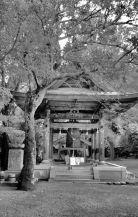 ishite-ji-temple-40
