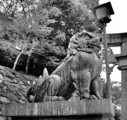 itsukushima-shrine-14