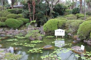 kannawa-umi-jigoku-3