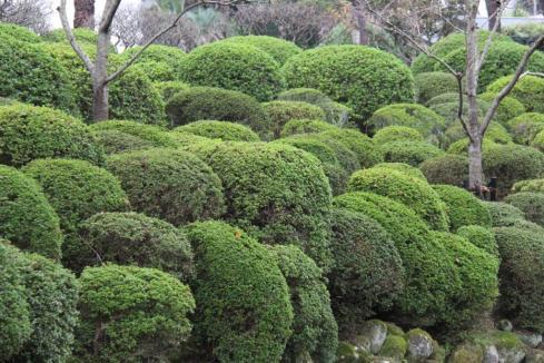 kannawa-umi-jigoku-6