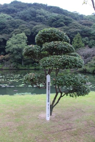 kannawa-umi-jigoku-8