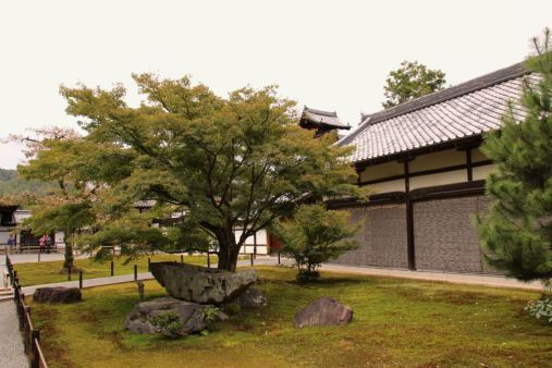 kinkaku-ji-temple-1