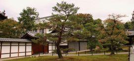 kinkaku-ji-temple-2