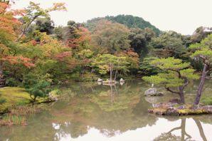 kinkaku-ji-temple-21