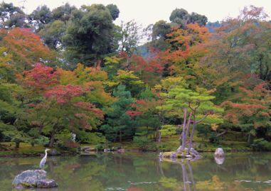 kinkaku-ji-temple-23