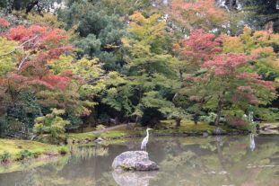 kinkaku-ji-temple-25