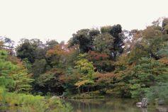 kinkaku-ji-temple-35