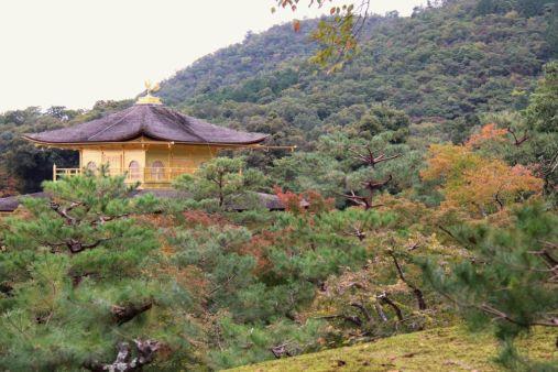 kinkaku-ji-temple-37