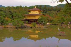 kinkaku-ji-temple-8