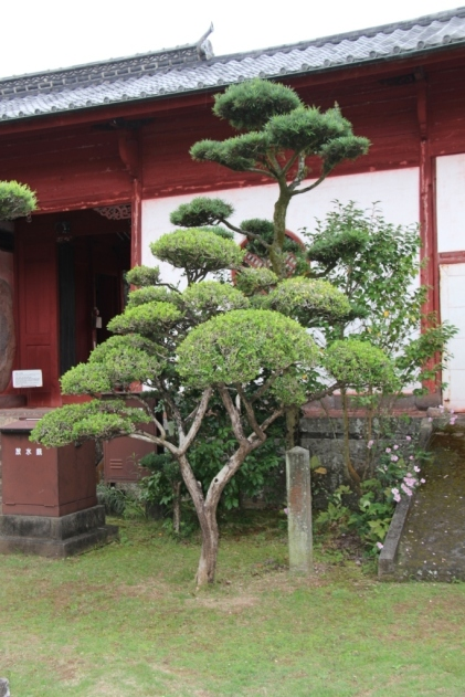 kofuku-ji-temple-9