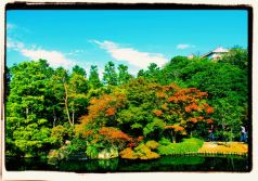 koko-en-garden-11