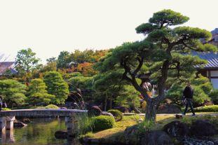 koko-en-garden-13