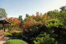 koko-en-garden-17