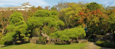 koko-en-garden-28