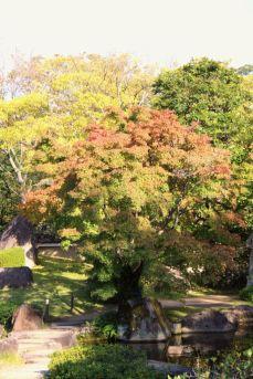 koko-en-garden-30