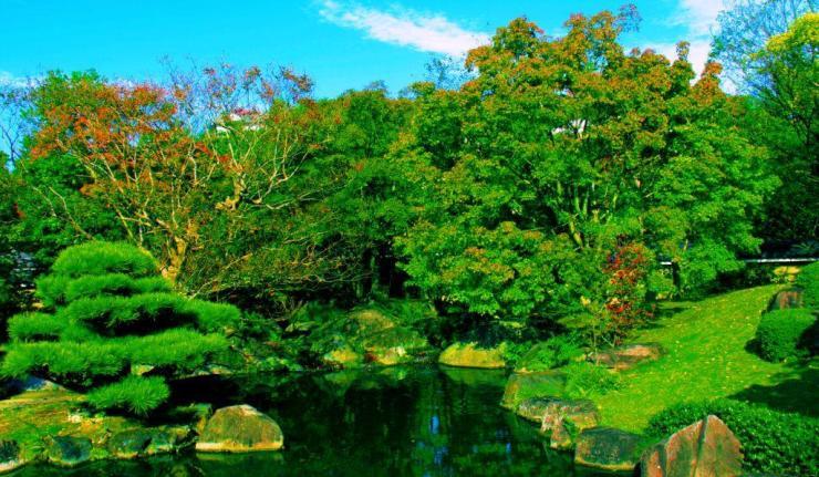 koko-en-garden-37