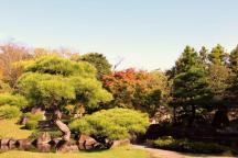 koko-en-garden-42