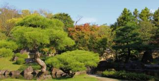 koko-en-garden-43