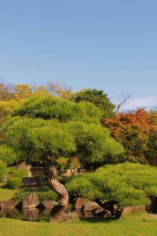 koko-en-garden-46