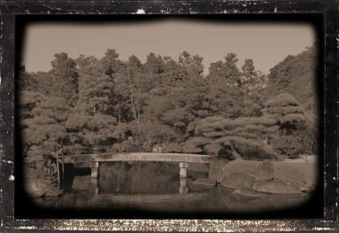 koko-en-garden-8