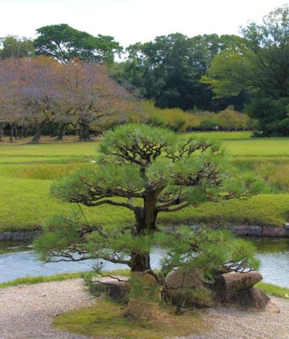 kurakuen-garden-49