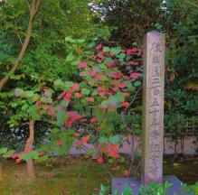 kurakuen-garden-5