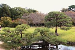 kurakuen-garden-50
